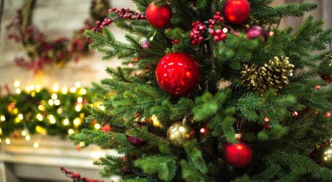 Куди відправитися туристу на новорічні свята?