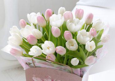 Поздравления с 8 марта – сестре, любимой женщине, девушке, подруге