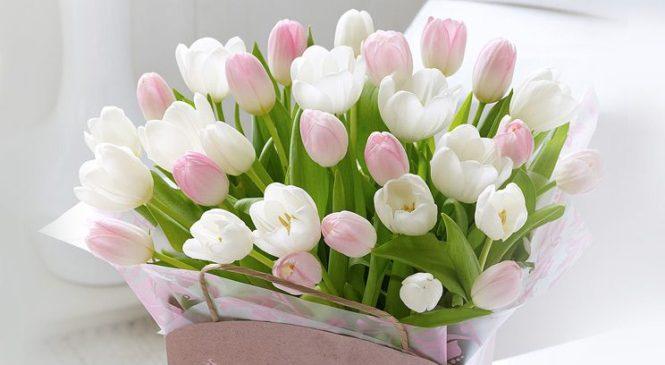 Привітання з 8 березня – сестрі, коханій, дівчині, подрузі